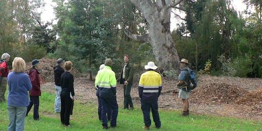 Seniors Walk 'n Talk in Clyde Cameron Reserve
