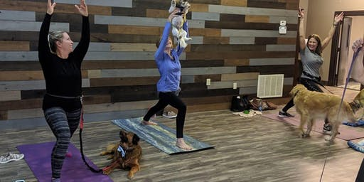 Doga at the Miller Haus