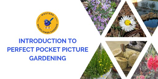 Introduction to Perfect Pocket Picture Gardening