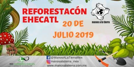 REFORESTACION EHECATL 20/07/2019 entradas