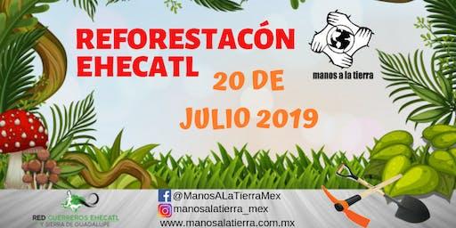 REFORESTACION EHECATL 20/07/2019