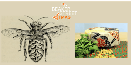 Turn your scientific illustration into a beeswax wrap tickets