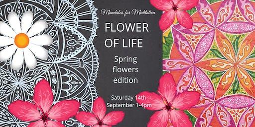 Mandalas for Meditation: Flower of Life