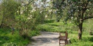Rainton Meadows & Joe's Pond, A History in Coal