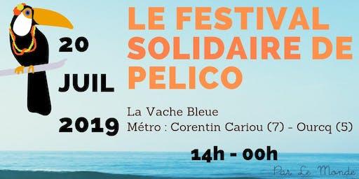 Jam Session au Festival Solidaire de Pelico