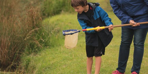 Sold Out - Pond Dipping Discovery Workshop