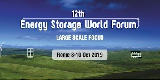 12th Energy Storage World Forum 2019