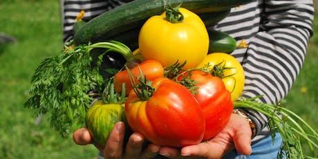 Cuisinons puis dégustons ensemble la récolte du potager billets