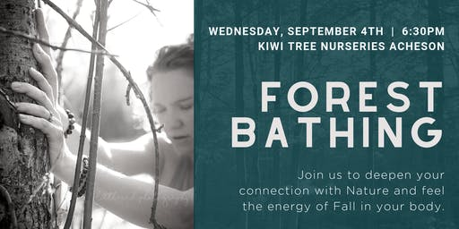 Forest Bathing Experience at Kiwi Nurseries