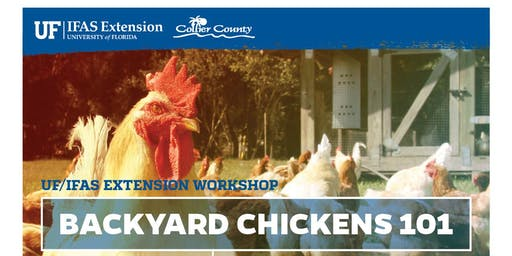 2019 Backyard Chickens: 101
