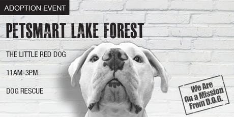The Little Red Dog Adoption Event - PetSmart Lake Forest tickets