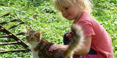Masterclass Cat vision instaples: introdcutie van de kat