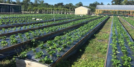 2019 Southwest Florida Small Farmers Network Meeting (SWFLSFNM) tickets