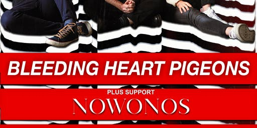 Bleeding Heart Pigeons support NOWONOS