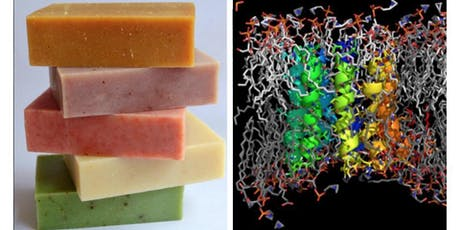 Biological Membranes and DIY Soap Making tickets