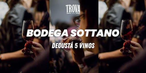 Degustá 5 vinos de Bodega Sottano