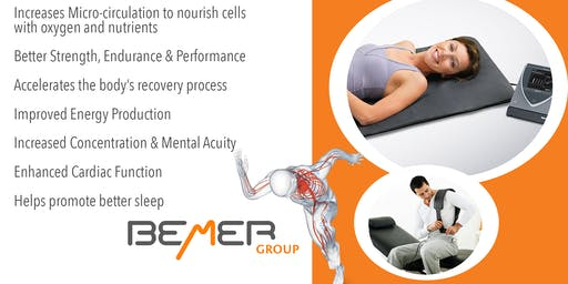 Bemer Lunch and Learn