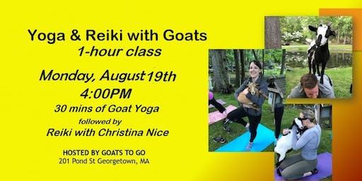 Yoga & Reiki Night with Goats