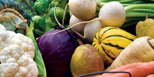 Planning your Fall Garden