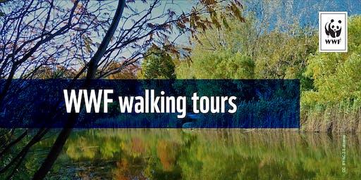 WWF walking tours: discover Angrignon Park's urban biodiversity