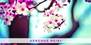 Curso de Reiki Usui - Primer Nivel (Villa Crespo)