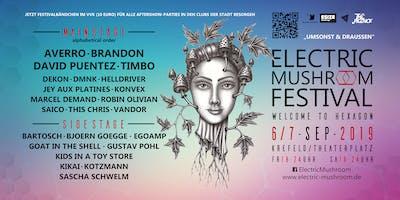Electric Mushroom Festival 2019