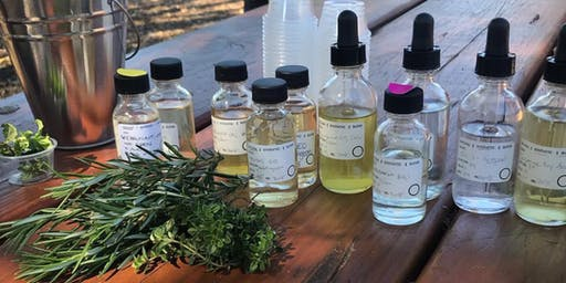 Introduction to Making Perfume