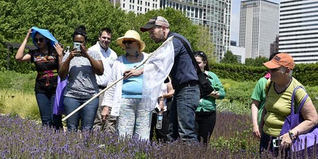 Guided Pollinator Walk tickets