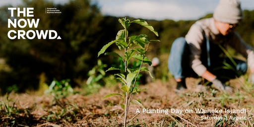 The Now Crowd presents: A Planting Day on Waiheke!