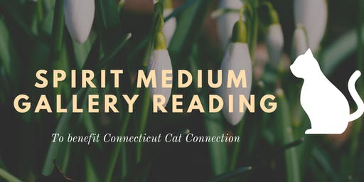 Spirit Medium Gallery Reading to Benefit Connecticut Cat Connection