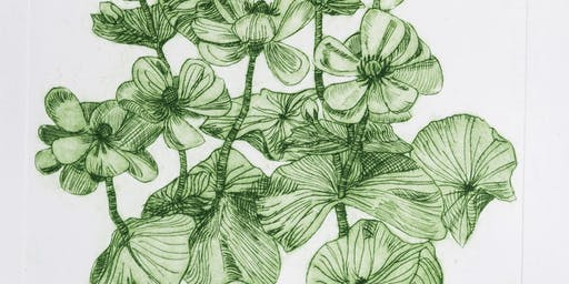 A Botanical Printmaking Workshop
