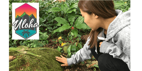"""Uloha Presents """"Forest Bathing: A Natural Connection"""" tickets"""