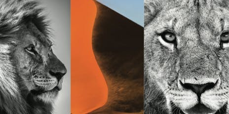 Group Show 'Art of Africa' - The Space Gallery @The Cannery