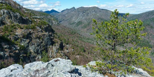 Linville Gorge Pinch In Backpacking Trip