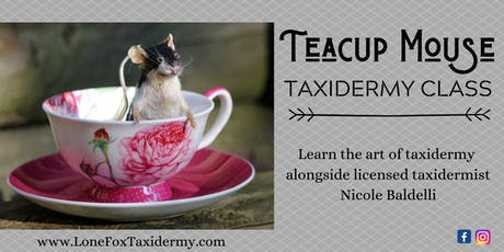 Teacup Mouse Taxidermy Class tickets