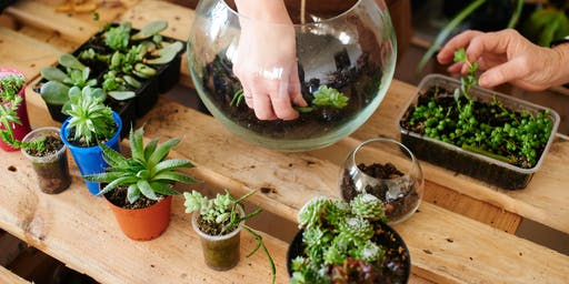 Terrarium Making at Marina Square