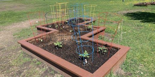 SPPS School Garden Tour