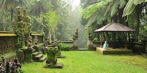 8 days Yoga Retreat in Bali -Divine You