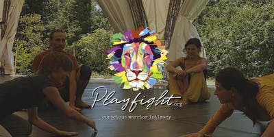 Playfight - La lotta che connette