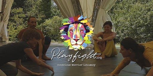Playfight - La lotta che connette