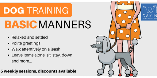 Basic Manners Dog Training -Springfield
