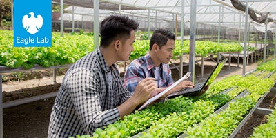 The Future of AI in Agriculture