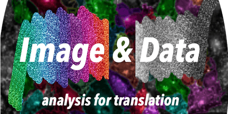 Image and Data Analysis for Translation tickets