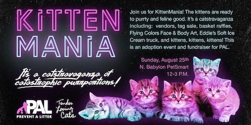 KittenMania