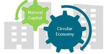 Aligning Natural Capital approaches and circular economy at the city scale