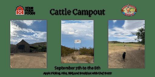 Cattle Campout