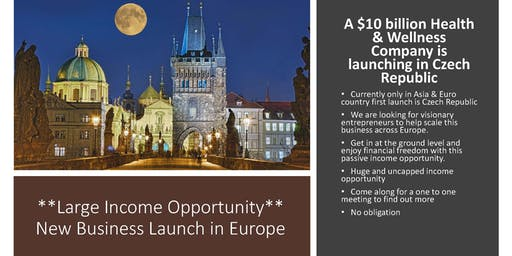 Income Opportunity: **New European Business Launch** Looking for Partners