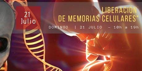 Liberación de memorias celulares - Reprogramando el ADN entradas