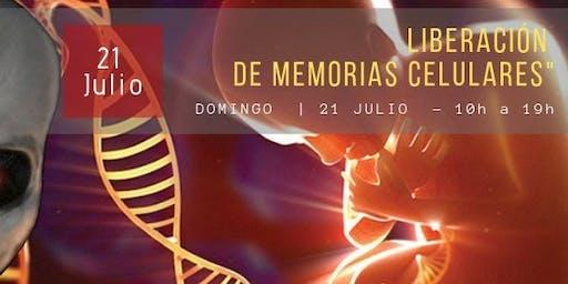 Liberación de memorias celulares - Reprogramando el ADN
