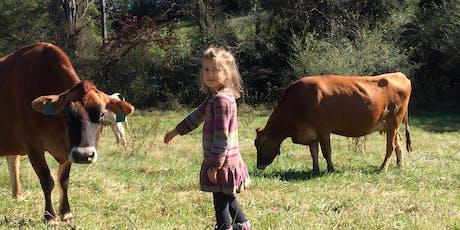 Meet the cows farm tour! tickets
